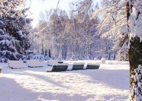 Park-Kultury-w-Powsinie---zima
