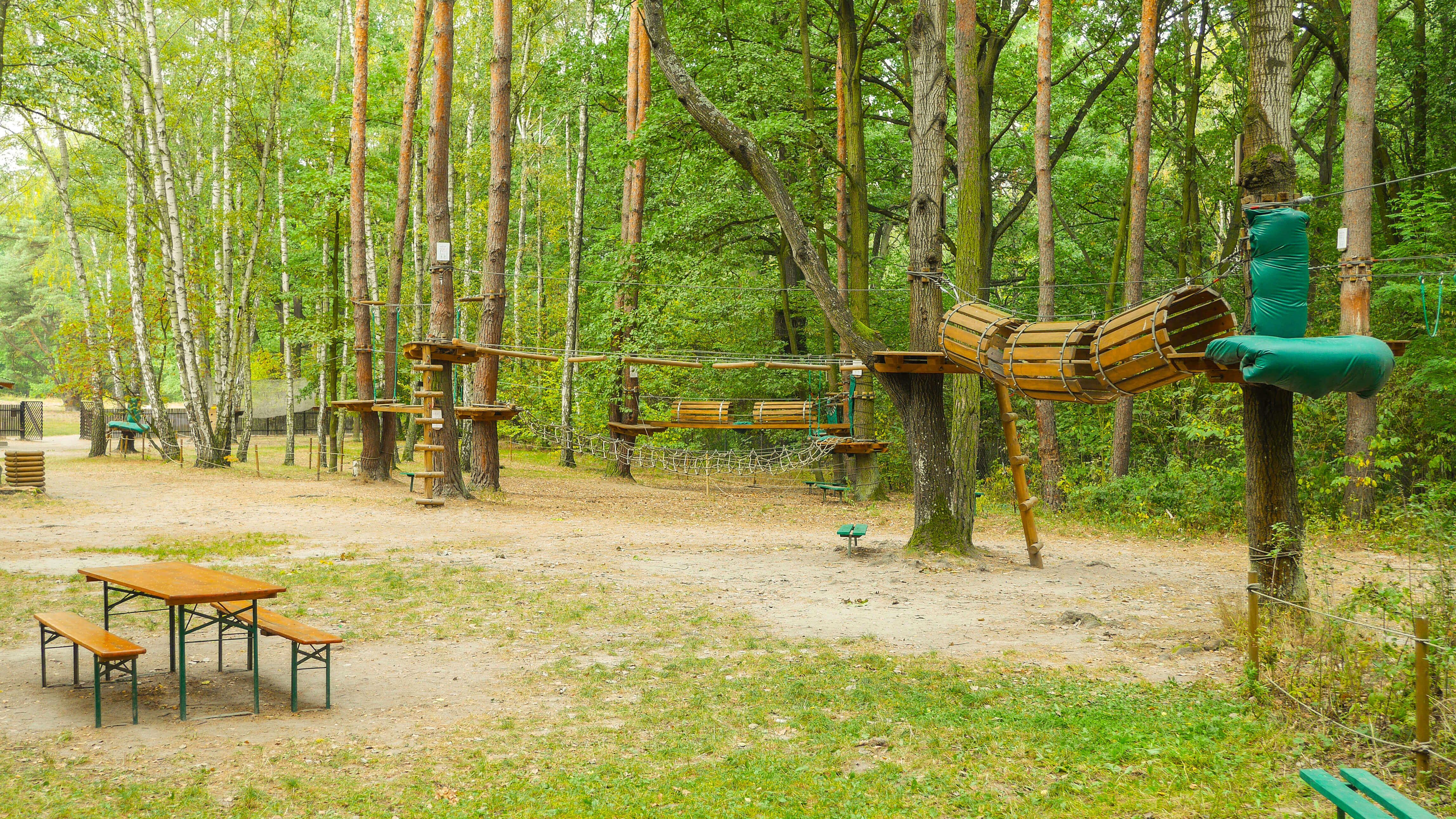Atrakcje parku linowego w Powsinie